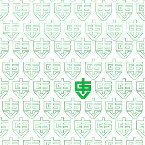 Il primo logo IGV